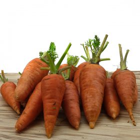 Carrot Loose